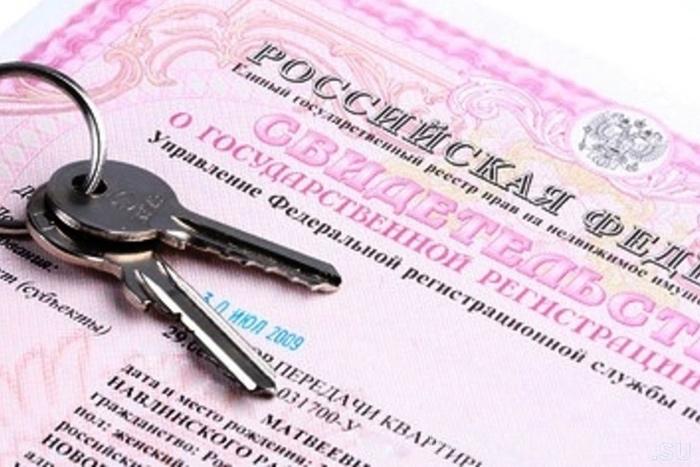 Жители России могут получить выписку изреестра недвижимости за13 мин.